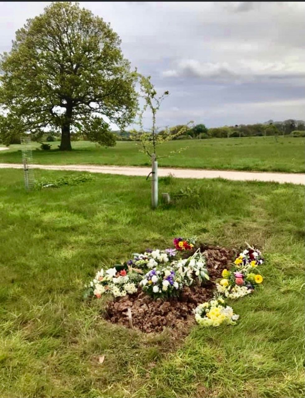 unconventional funerals - natural burial
